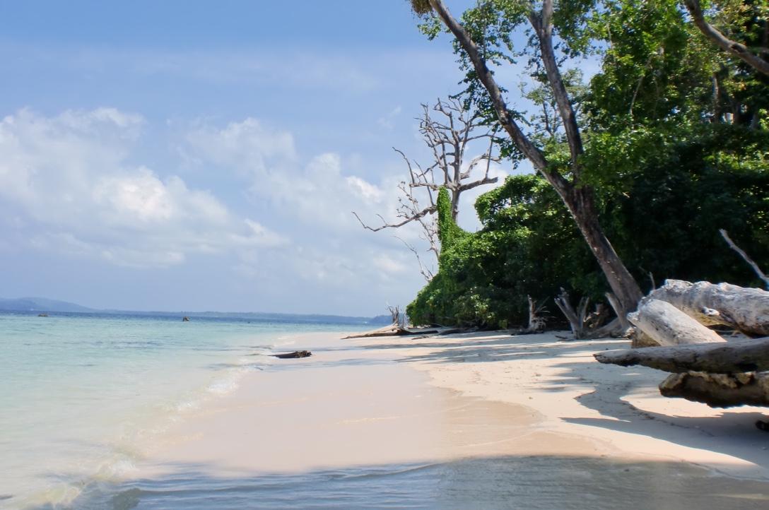 """Elephant Beach"" - Andamanerna 2010/2011"